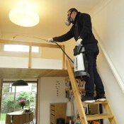 Pest Controller Spraying in Ealing