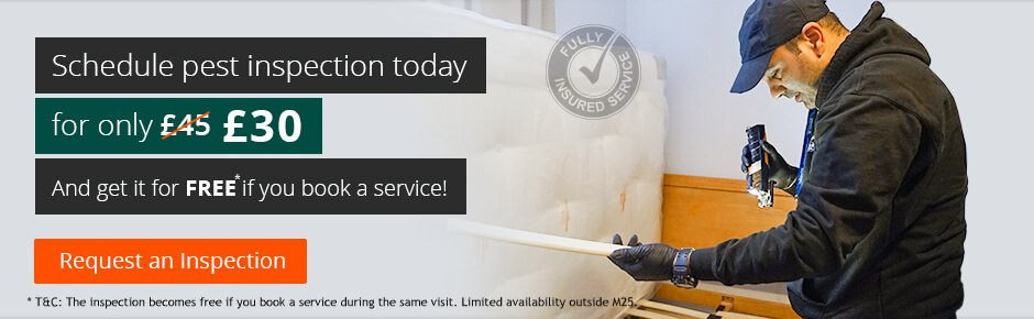 24/7 Pest Control in London