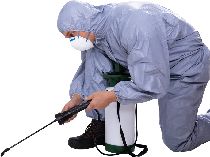 24/7 Pest Control UK